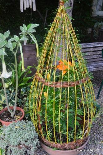 bouquet champêtre,jardin,hémérocalles,nénuphards 133.JPG