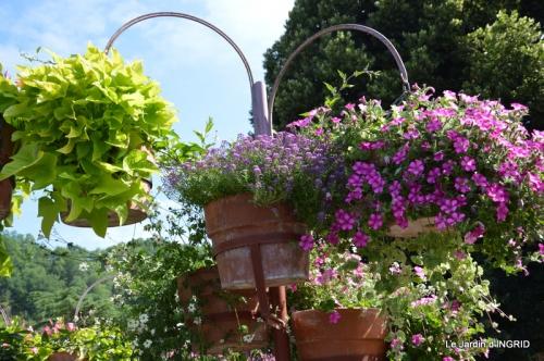 jardin,les filles,gerbera,Lalinde 132.JPG