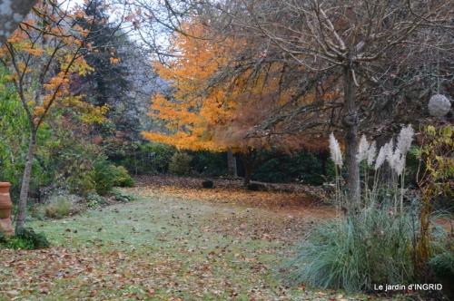 composition,kakis,jardin givré,asclépias,lalinde 083.JPG