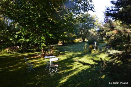 jardin,puces Lasmonzie,asters 014.JPG
