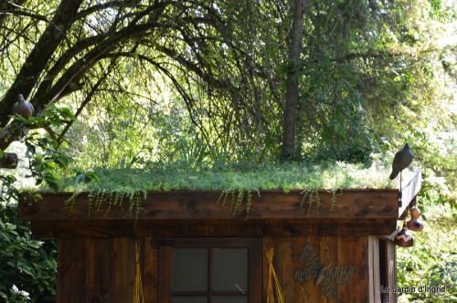 chez Fabien,le canal,jardin,hémérocalles,le souci,potager 154.JPG