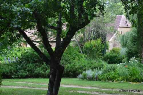 jardin,chez Bernadette,puces,cygnes,pluie 189.JPG
