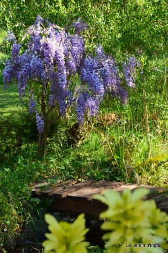 mésanges,escargots,ros. de banks,abeilles,Monpazier,Banes,Forêt 120.JPG