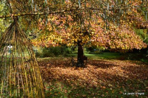 automne,arbres,inondation 101.JPG