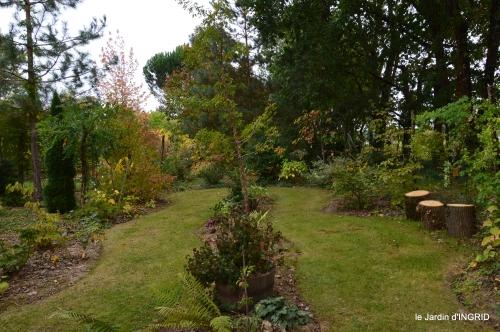 brocante st avit Se.jardin st Avt,récolte tomates 124.JPG