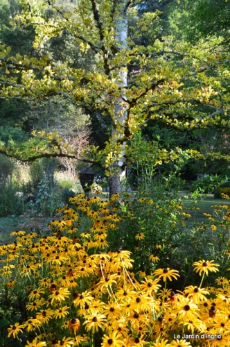 mon coin,Monique,les oies,mon jardin 041.JPG