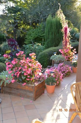 citrouilles,jardin,Combarel 019.JPG