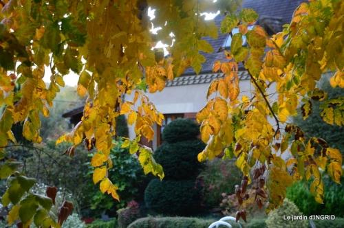 canal automne ,jardin,Ines 029.JPG