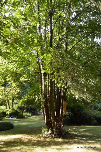 coulobre,Romane,jardin,Lamonzie Monstatruc,les filles 051.JPG