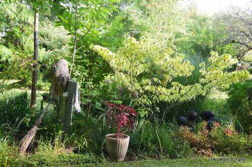 en juin jardin 146.JPG