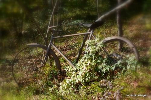 jardin automne ,travaux feuilles 030.JPG