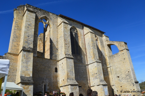 gastéropodes,les cygnes,marché,l'Abbaye Nouvelle,jerdin 032.JPG