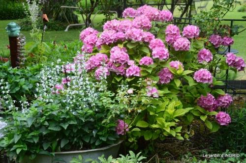 juin jardin,bouquet,sophie 052.JPG