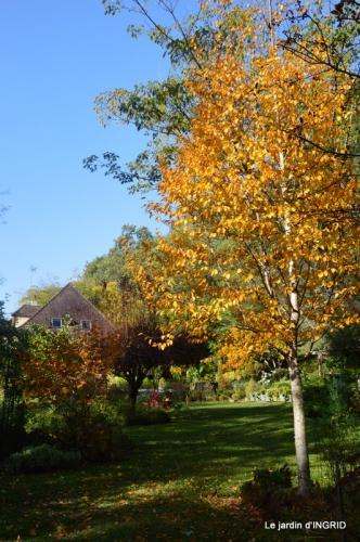 canal automne ,jardin,Ines 020.JPG