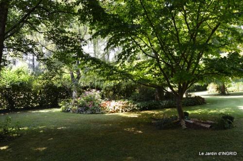 robe Julie,jardin,le flambé,lantanas,dahlias 028.JPG