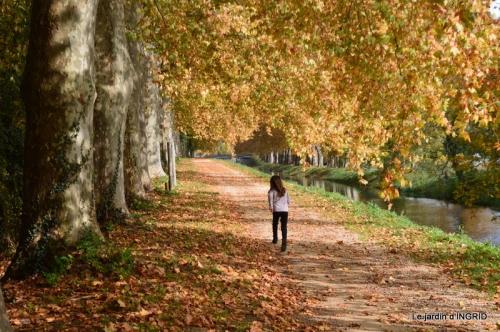 canal automne ,jardin,Ines 104.JPG