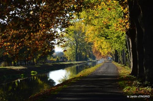 jardin automne,voisinage,canal 174.JPG