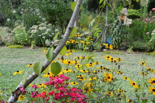 lantanas,jardin aout, 043.jpg