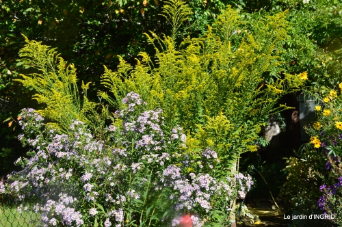 jardin pour l'automne,affiche vide jardin 044.JPG