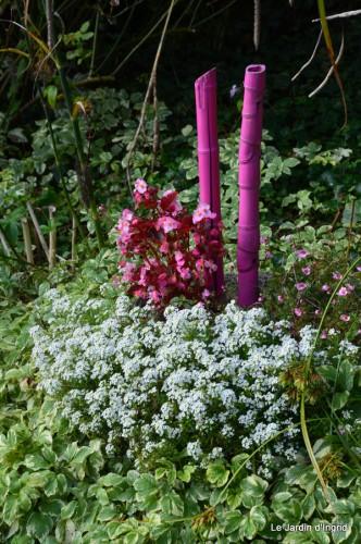jardin,fleurs blanches 057.JPG