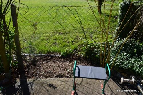 jardin printemps 022.JPG