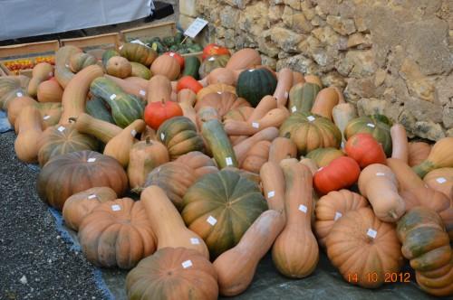 champignons,citrouilles,st Mayme de Péreyrol,fuschias,jardin aut 074.JPG