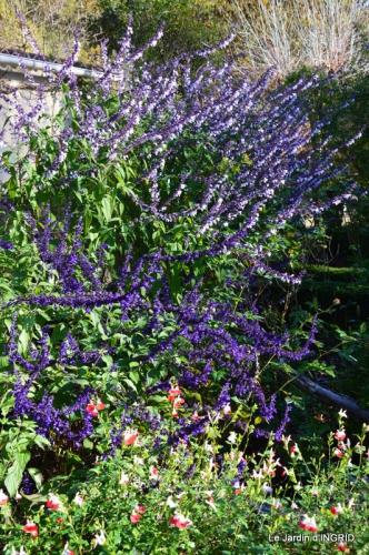 jardin, feuilles,sauges,gloriette,land art 012.JPG