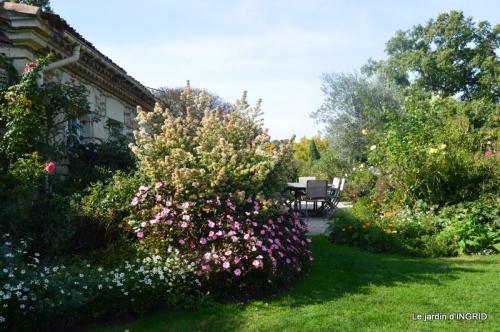 La Romieu,Coursiana,chez Renée,Ginkgo biloba 055.JPG