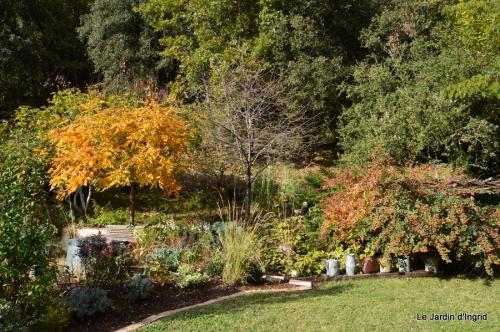 jardin serre bucher automne 056.JPG