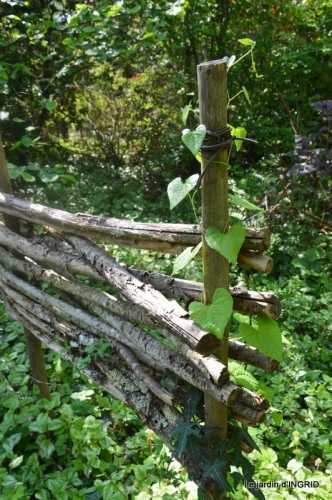 Fouleix,cygnes,Inès,jardin 108.jpg