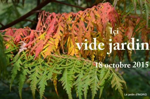 jardin ,chez Fabien,automne 089.JPG