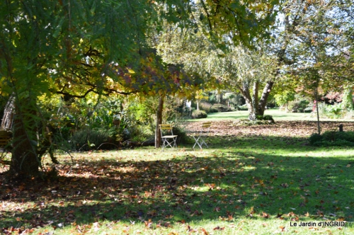 jardin ,Arya,noix 018.JPG