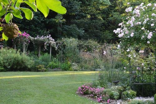 jardin,chez Bernadette,puces,cygnes,pluie 030.JPG