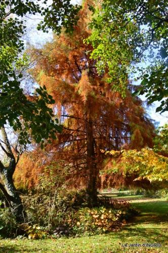 les arbres en automne,cabane 087.JPG