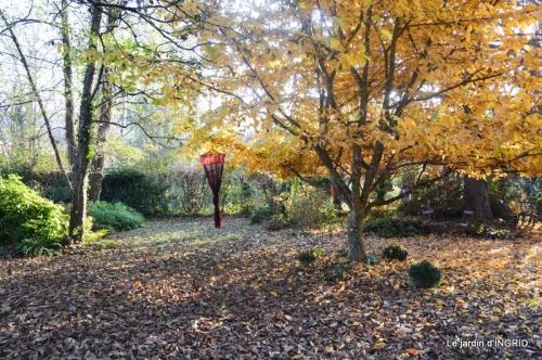 composition,kakis,jardin givré,asclépias,lalinde 093.JPG