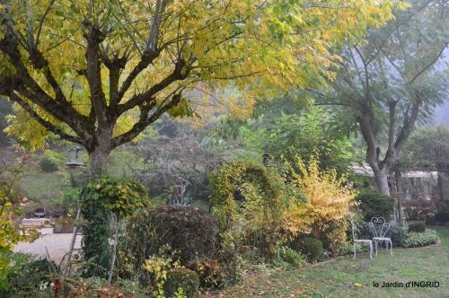 brouillard le matin d'automne 035.JPG