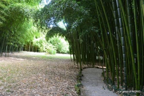 bambous Roque Gageac,jardin,bouquet 159.JPG