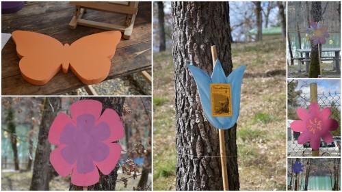 2013-03-24 troc graines Neufont,magnolia stelleta.jpg