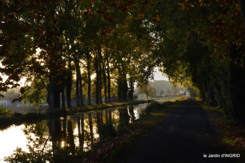 jardin automne,voisinage,canal 079.JPG
