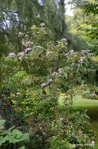 Meyrals,le Bugue,jardin 109.JPG