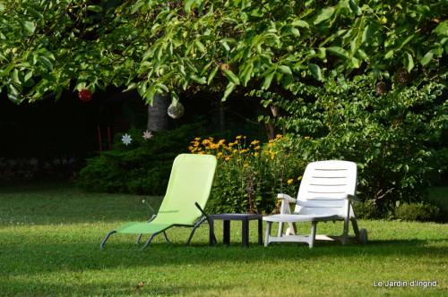 hibiscus,St Marcel,chez Brigitte,chats,jardin,Banes,papillons 115.JPG