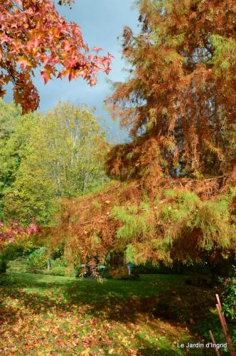 travaux,érable rouge,abeilles,Monpazier,jardin 028.JPG