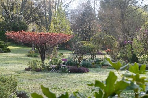 jardin,Ciron,pigeons,magnolia,amélanchier 107.JPG