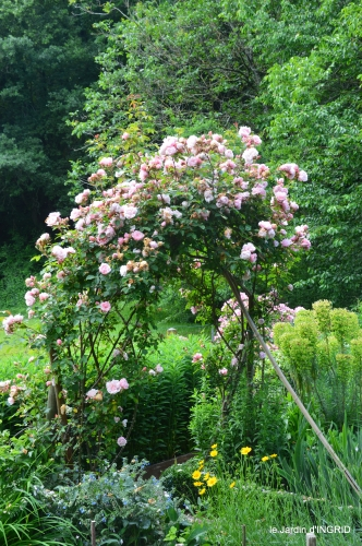 jardin,portes ouvertes,Julie 092.JPG