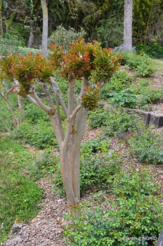 la Roque Gageac,Ines,jardin 090.JPG