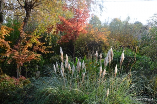 canal automne ,jardin,Ines 046.JPG