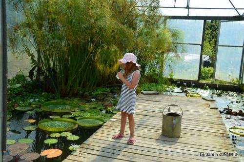 les jardins d'eau de Carsac 152.JPG