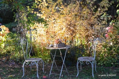 sauges,bouleau,coucher de soleil,érables,automne 003.JPG