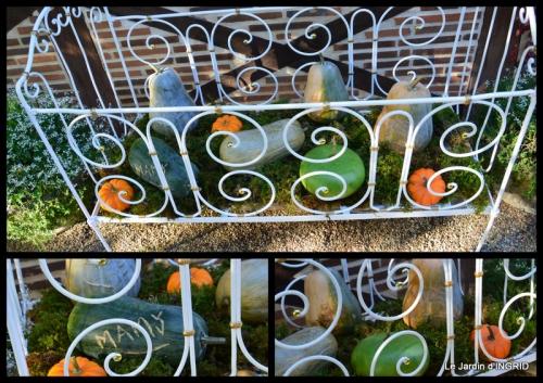 2015-10-10 rhus,colline,buis taillé,noix,manthe religieuse,bouquet.jpg