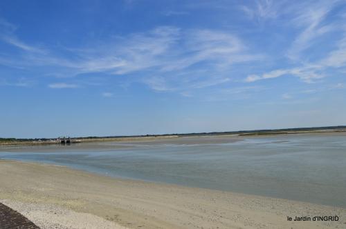 la baie de Somme 080.JPG